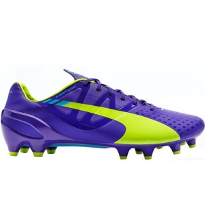 PUMAEvoSpeed1.3Purple